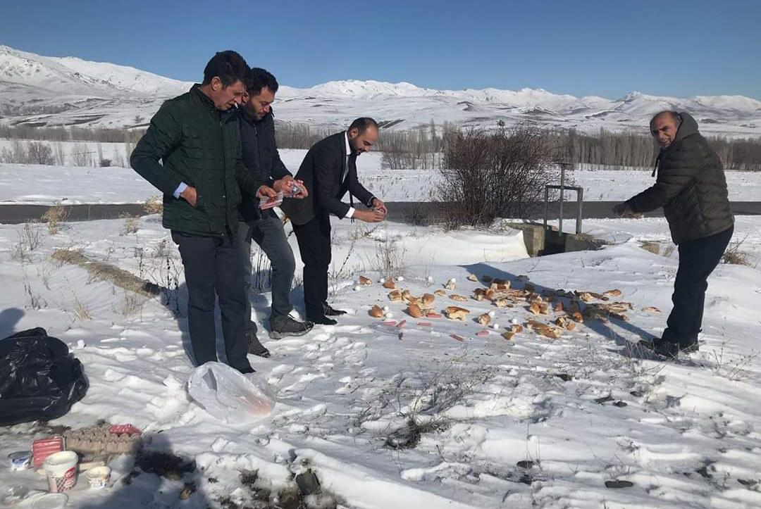 Aydıntepe Belediyesi Yabani Hayvanları Unutmadı