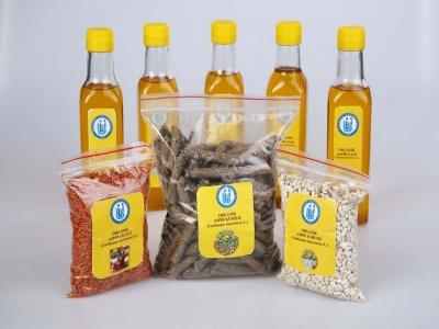 Aspir Çiçeğinden Organik Aspir Yağı Üretildi