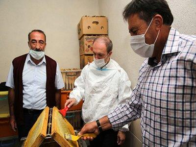 Kitre Köyü'nde Bal Sağımına Başlandı